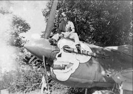 Curtiss-P-40-nose-art-10AF-80FG89FS-Burma-Banshee-The-Rough-Cobb-02.thumb.jpg.2f0b1c6d0fc13c5fdc61d2027baf1a75.jpg