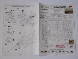 HA-300_07.jpg