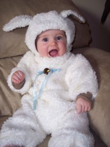 Matt's lamb costume made by his aunt Keri
