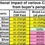 State Approaches to Handling CSR Uncertainty for 2018 Premium