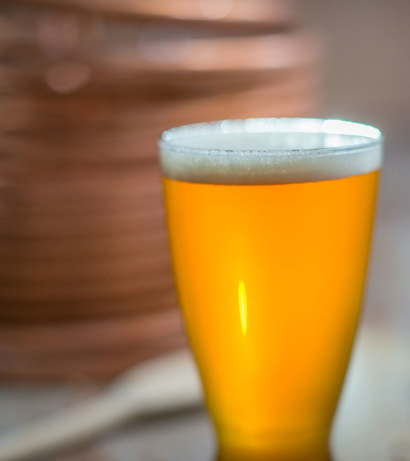 What is Beer Haze and How Can You Fix It?