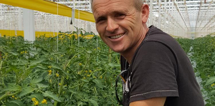 Greenco opts for innovation with HORTISENSE®