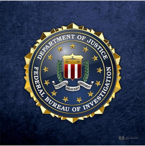 THE LARGE PLOT- AN FBI NOVEL