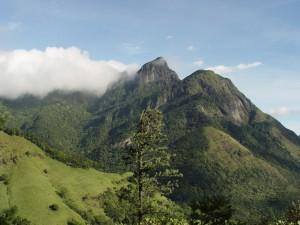 Sirlanka Indian Journeys (2)