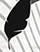 feathersmall.png