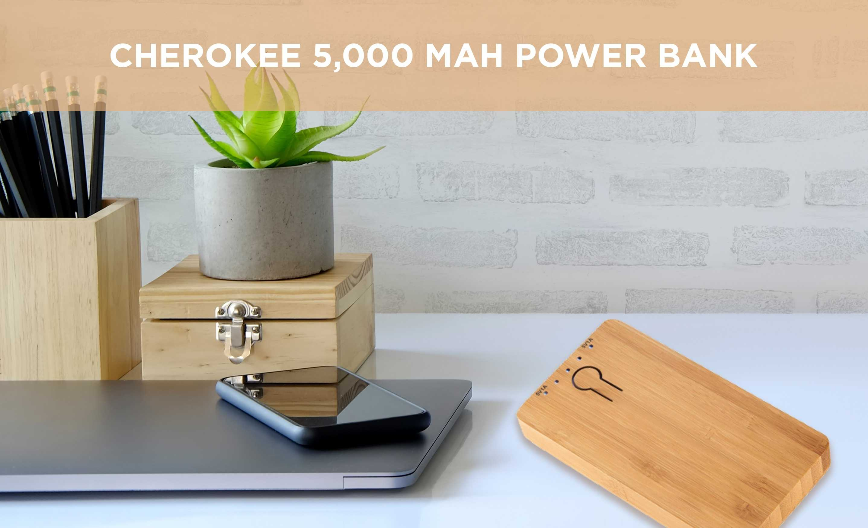 AIM cherokee power bank