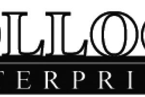 Bollock Enterprises LLC