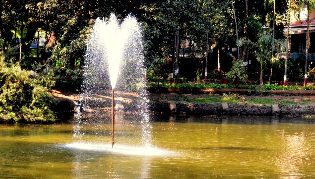 Fountains of Happiness, Peace or Knowledge.. whatever you may call them, witnessing them in front of your eyes shall still remain 'Priceless'