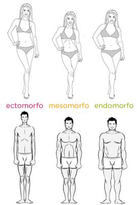 ¿cómo es la forma de tu cuerpo?
