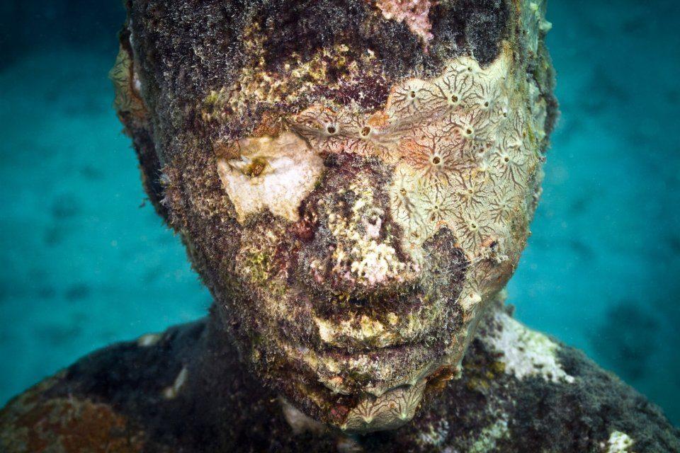 Viccisitudes. Depth 5m, Grenada, West Indies. Photo: Jason Decaires Taylor