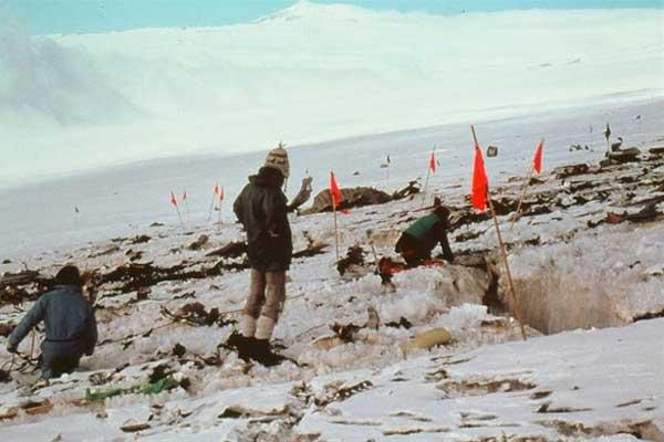 Mount Erebus Crash Recovery