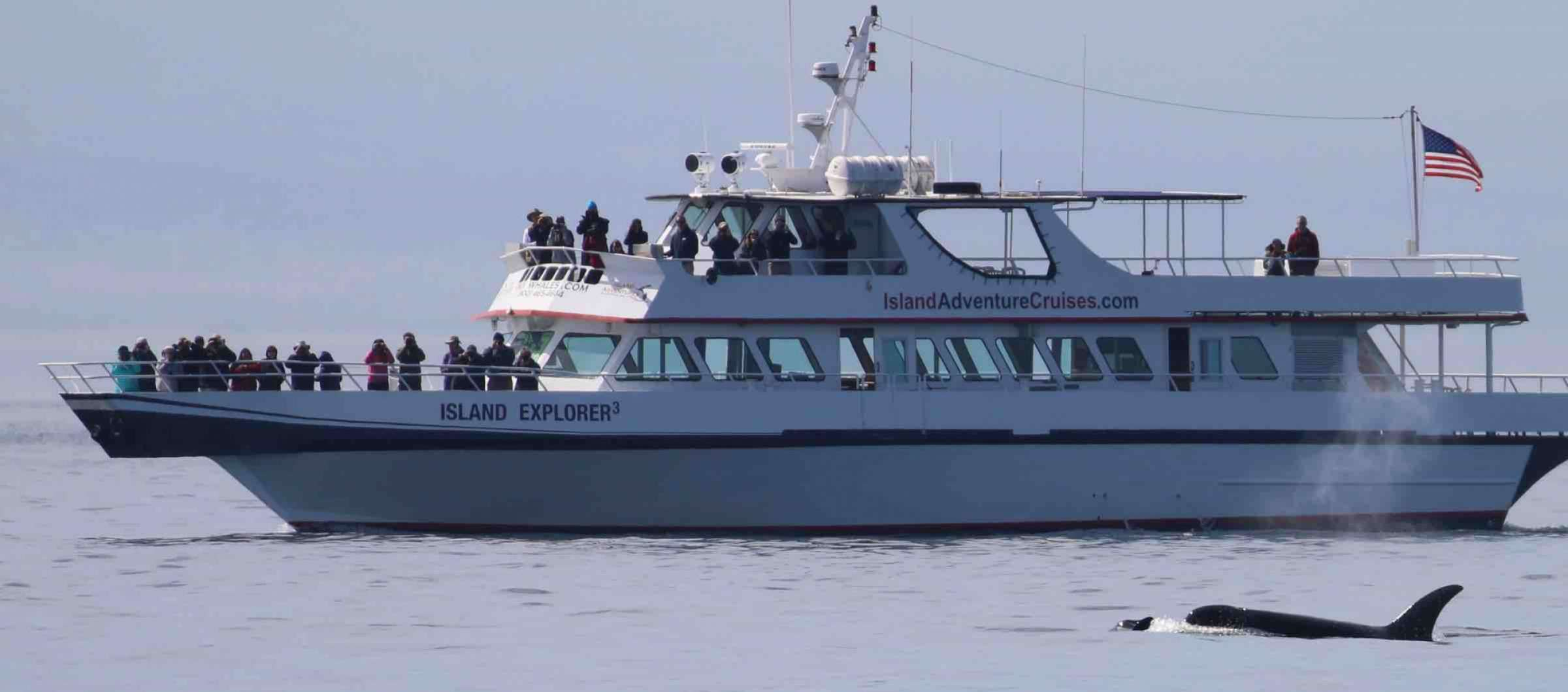 Seattle Whale Watching Island Explorer 3
