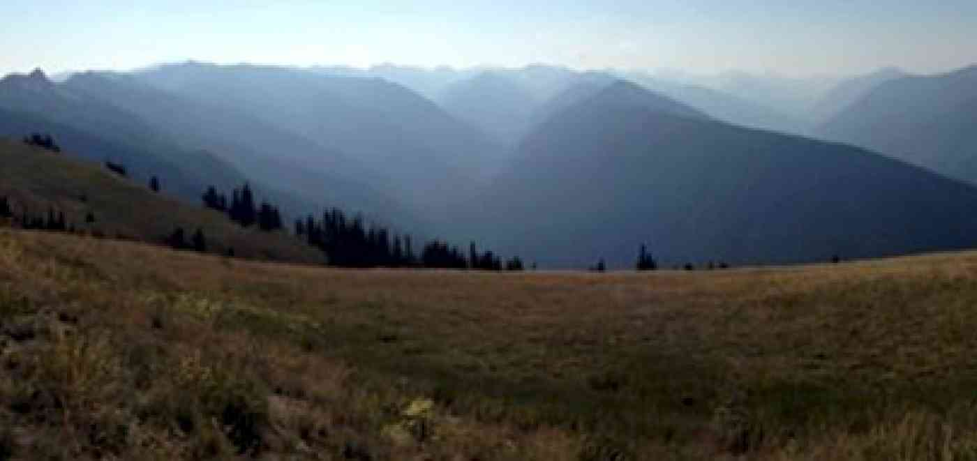 Scenery Hurricane Ridge