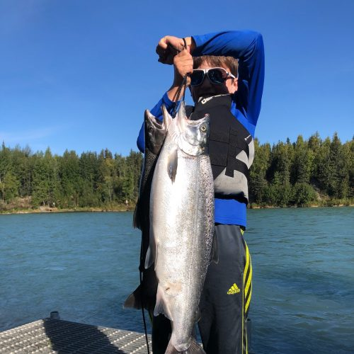 Kenai River Silver Salmon from our dock
