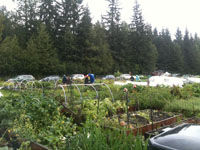 Juneau Community Garden. File photo.