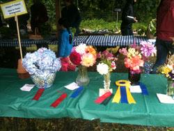 Floral Entries