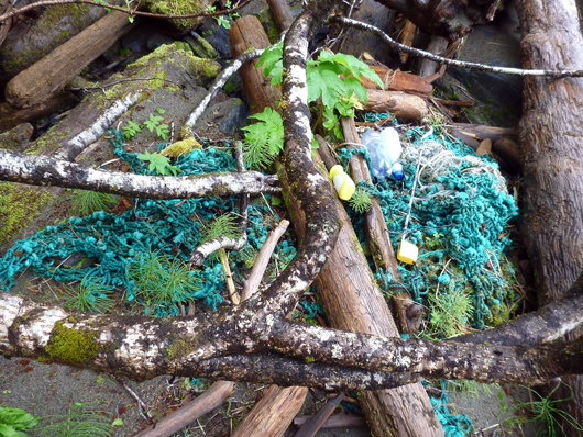 NOAA scientists surveying the beaches of Southeast Alaska for marine debris found this fragment of trawl web entangled with beach logs, along with two single-use water bottles and a dishwashing soap bottle in Veta Bay on Baker Island.
