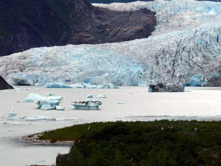 "This photo was taken on July 4 at about 4 p.m. following a series of large calving events on Tuesday, July 3. ""Today the lake is filled with icebergs including some huge pieces that are noticeably moving around the lake,"" said Laurie Craig, lead naturalist for the Mendenhall Glacier Visitor Center. ""They are subject to rolling over or breaking apart. Waves could result from unexpected glacier activity."""