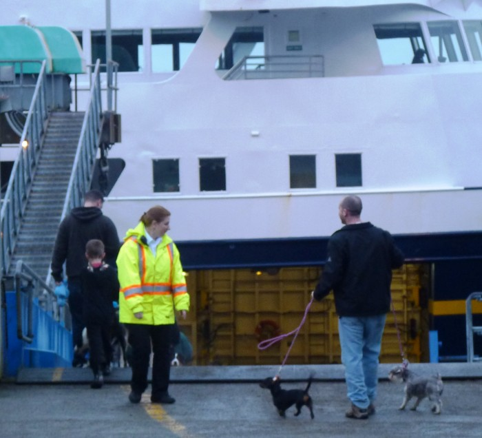 A marine highway staffer watches as passengers with dogs reboard the ferry Matanuska before departing Wrangell. The Mat is one of 11 ferries serving 35 communities.