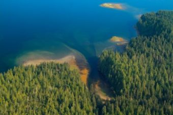 Aerial view of Tongass National Forest
