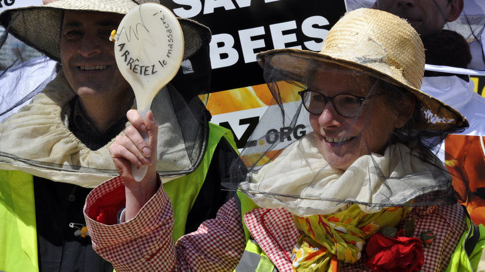 Beekeepers demonstrate at the EU headquarters in Brussels Monday, as lawmakers vote on whether to ban pesticides blamed for killing bees. Georges Gobet/AFP/Getty Images