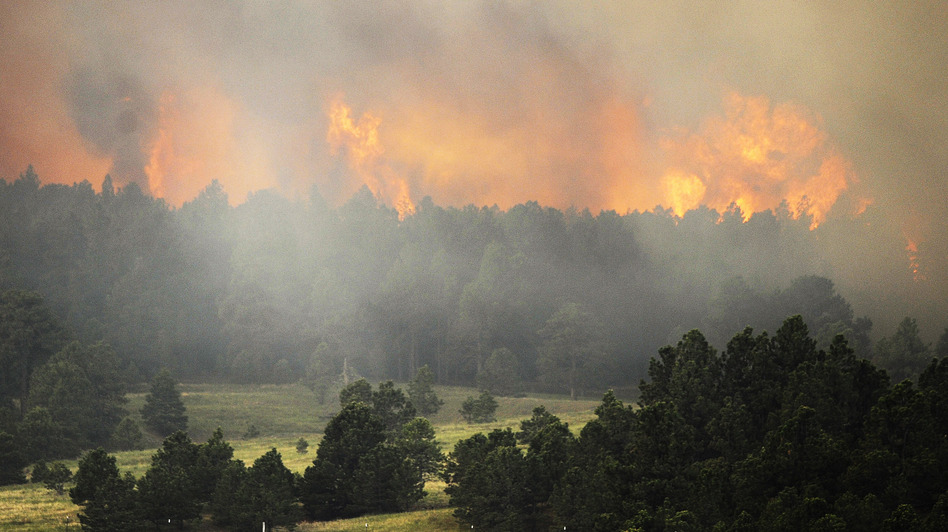 "The Black Forest wildfire is burning near Colorado Springs, Colo. As Thursday dawned it was ""zero percent contained,"" authorities said. Chris Schneider/Getty Images"