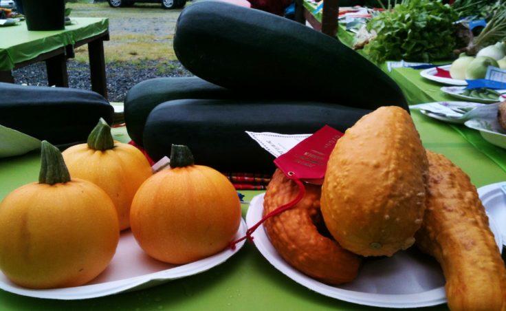 Harvest Fair2