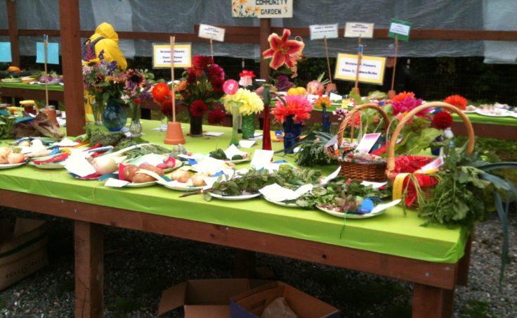 Harvest Fair8
