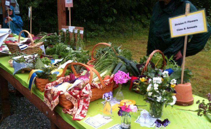 Harvest Fair9