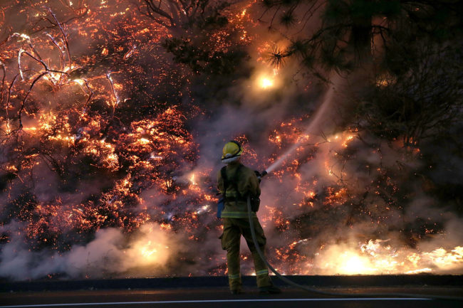 A firefighter uses a hose to douse the flames of the Rim Fire on Saturday near Groveland, California. Justin Sullivan/Getty Images