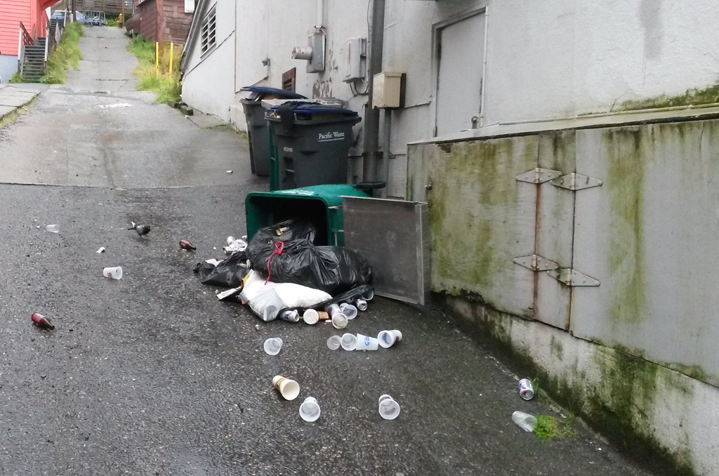Trash can raided by a bear