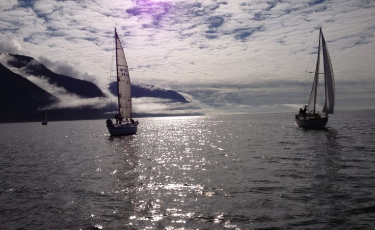 The sun came out for the third day of the SEAS Labor Day Regatta. (Photo by Lisa Phu/KTOO)
