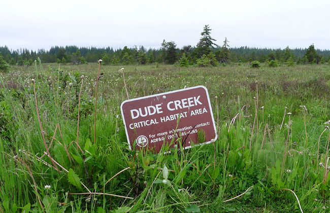Dude Creek Critical Habitat Area