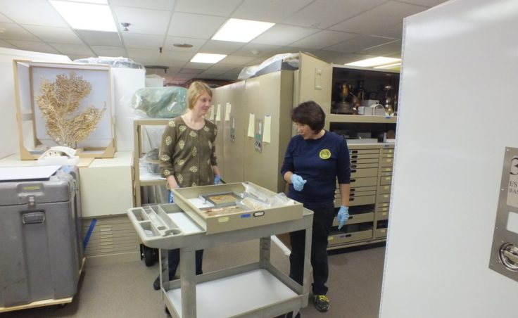 Alaska State Museum training-6
