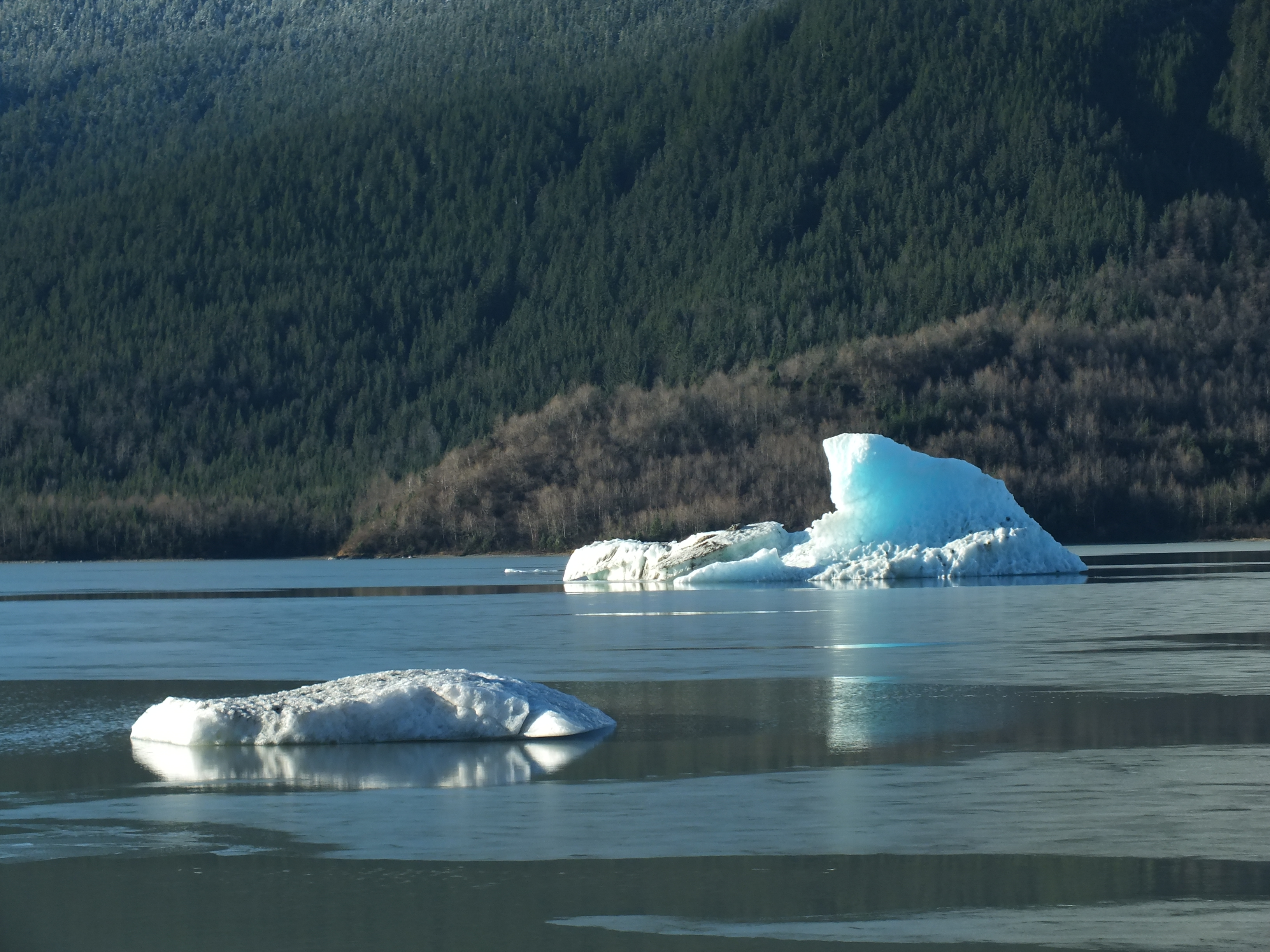 Mendenhall Lake icebergs