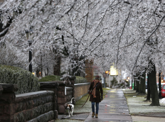 Heather Griffin, of Buffalo, N.Y., and her dog Sal walk beneath ice-covered trees on Sunday in Buffalo. Mike Groll/AP