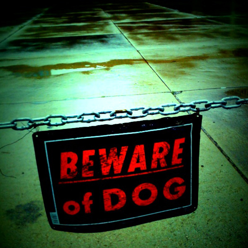 Beware of dog sign. Photo by unsure shot/Flickr Creative Commons.
