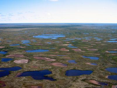 Desiccated lakes near Churchill, Manitoba