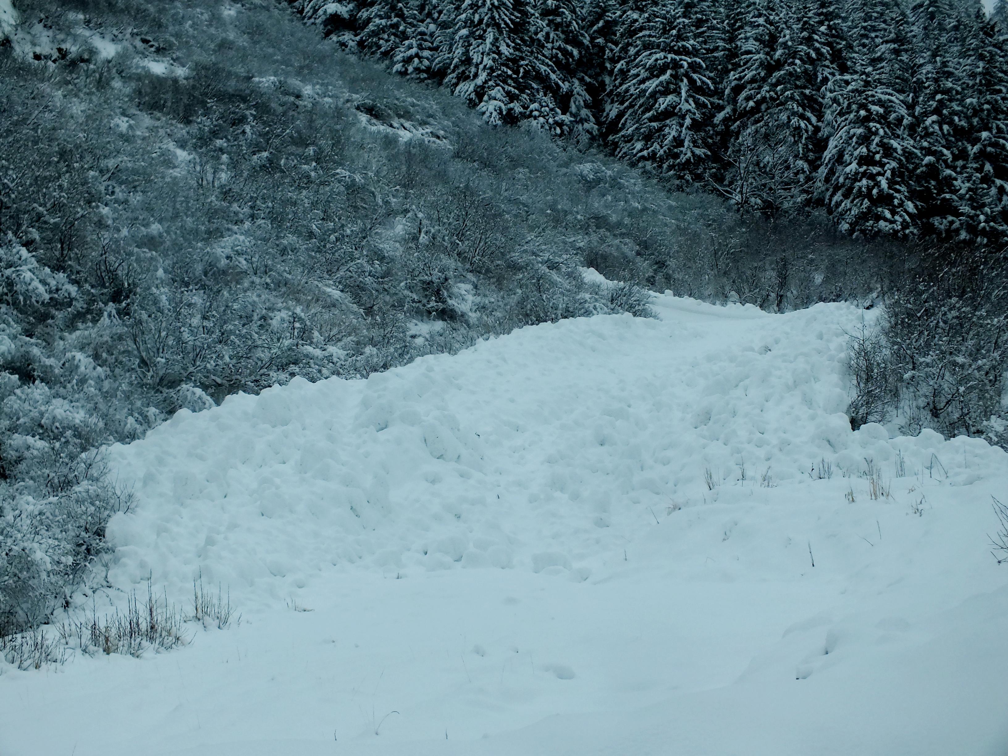 Snowslide Creek
