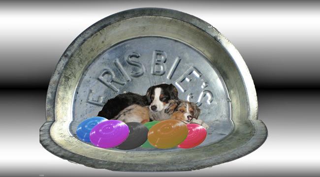 Frisbee.GW_650x350