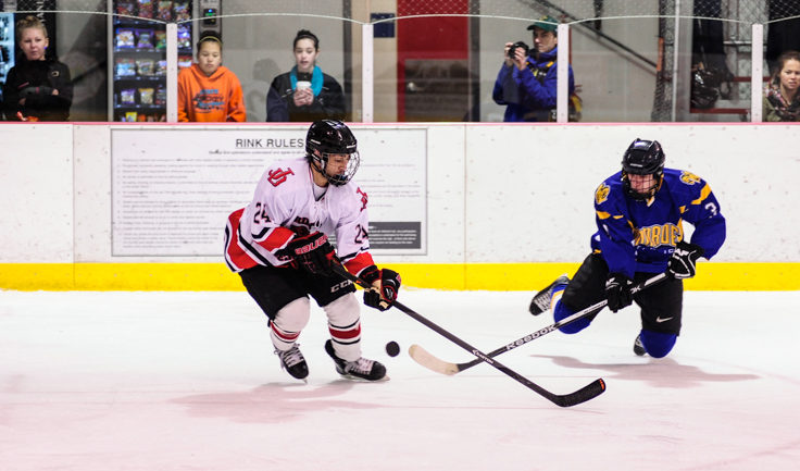 Juneau's Chase Barnum steals the puck from Monroe Catholic's Sebatsian Griffin in the second game of the two-game series.