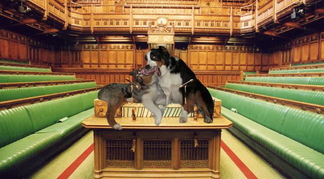 Parliament.GW_650x360