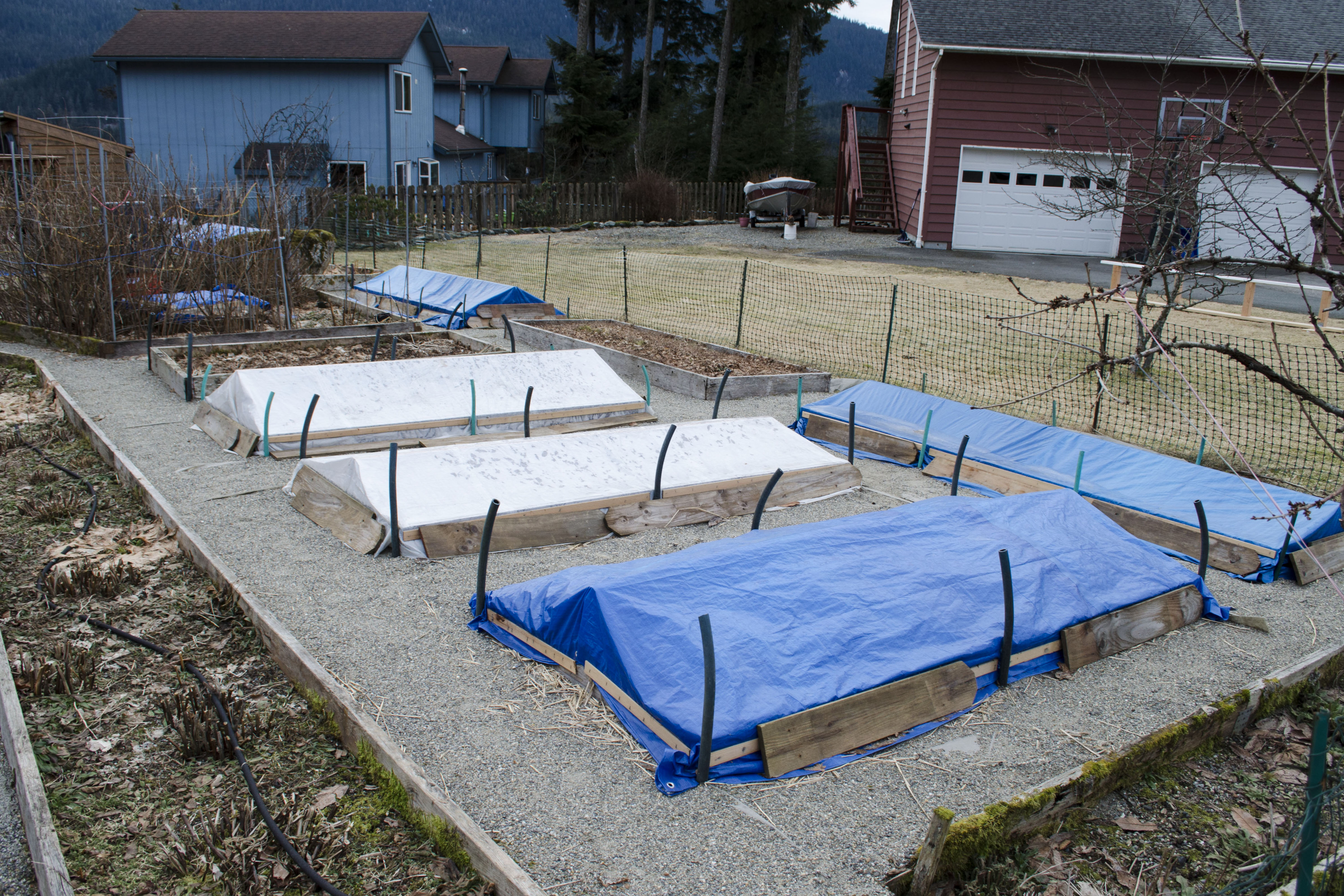 A Juneau garden prepared for the winter. (Photo by Aaron Russell)