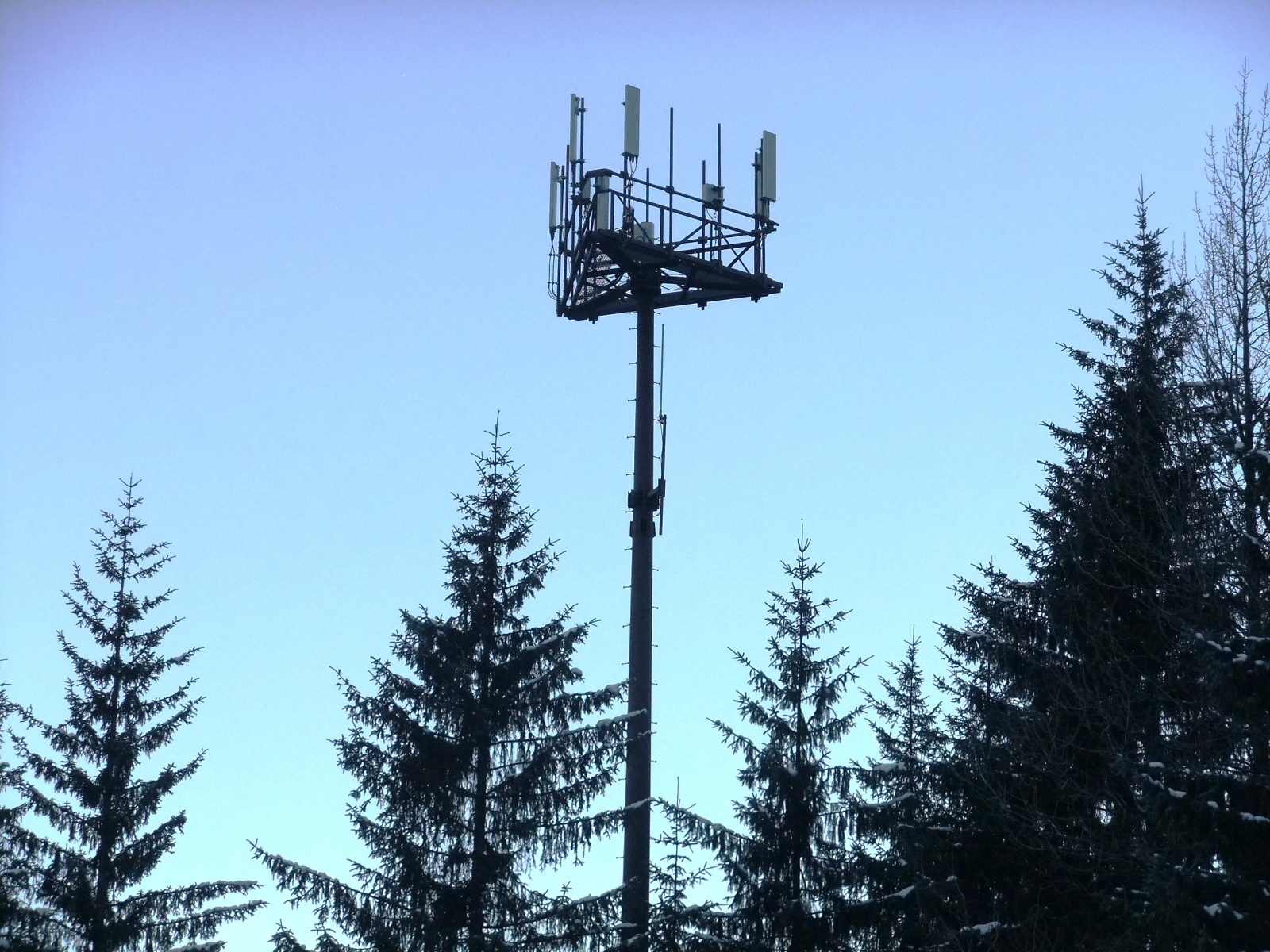 Wireless communication tower in the Mendenhall Valley. (Photo by Rosemarie Alexander/KTOO)