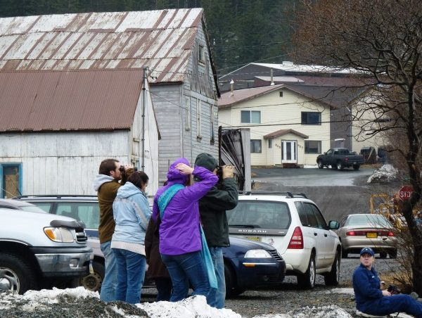 A small crowd of whale watchers use binoculars to view an orca pod from the Douglas Boat Harbor parking lot. (Ed Schoenfeld/CoastAlaska News)