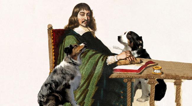Descartes.GW_650X360