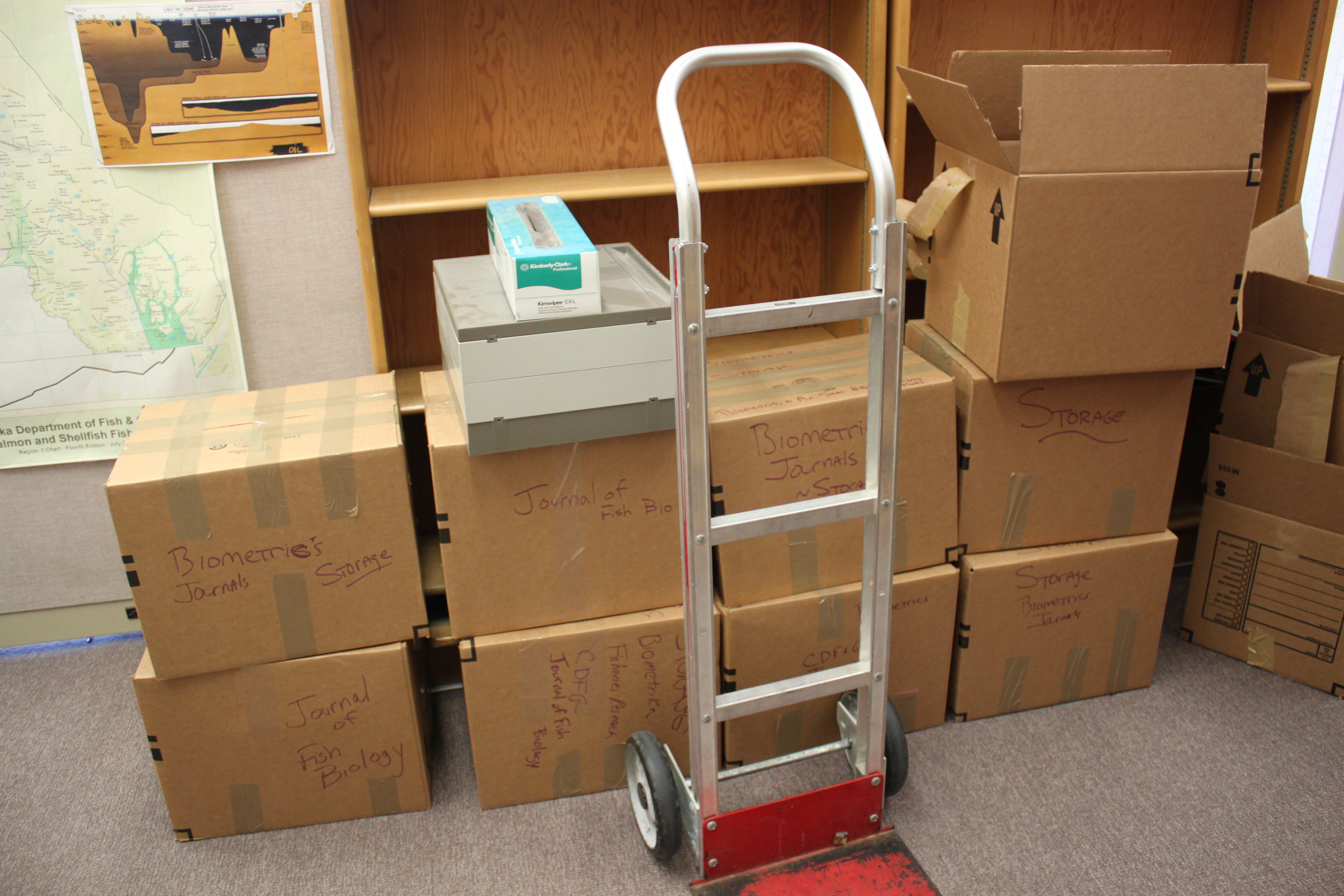 Boxes sit ready to be moved in the Douglas Island Building. (Photo by Lisa Phu/KTOO)