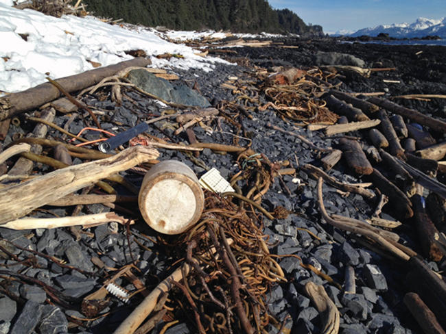 Tsunami Debris on the beach. (Photo by Annie Feidt/APRN)