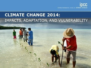 The U.N. Intergovernmental Panel on Climate Change's report. ipcc.ch