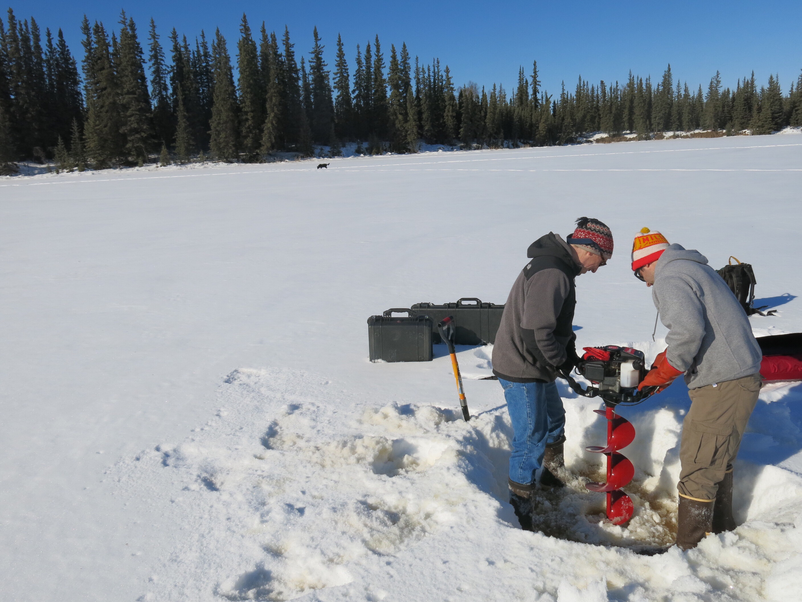From left, Chris Arp and Ben Gaglioti drill a hole in a small  lake near Fairbanks. (Photo by Ned Rozell)